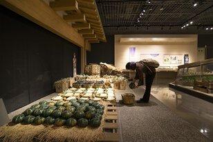 足立区郷土博物館