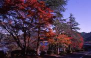 藺牟田池県立自然公園