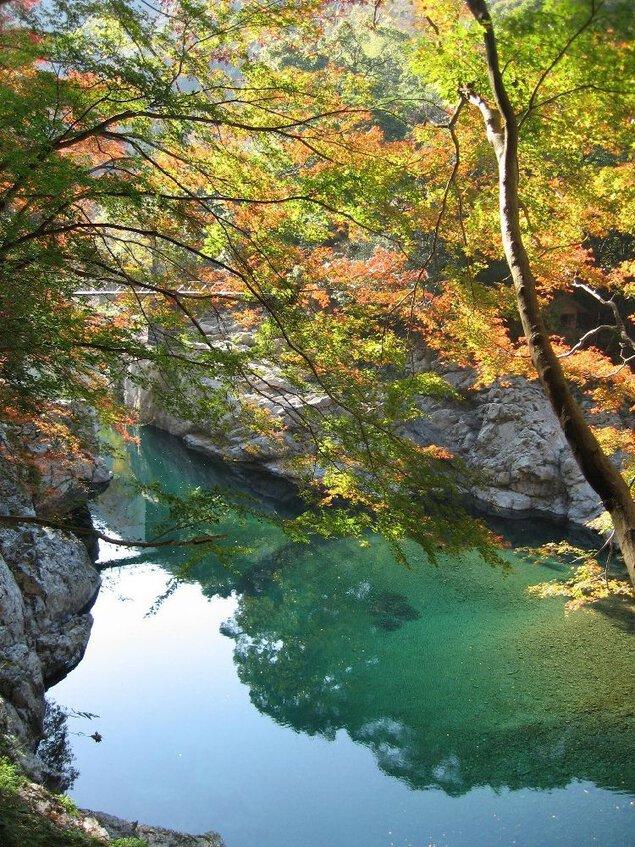 見立渓谷の紅葉