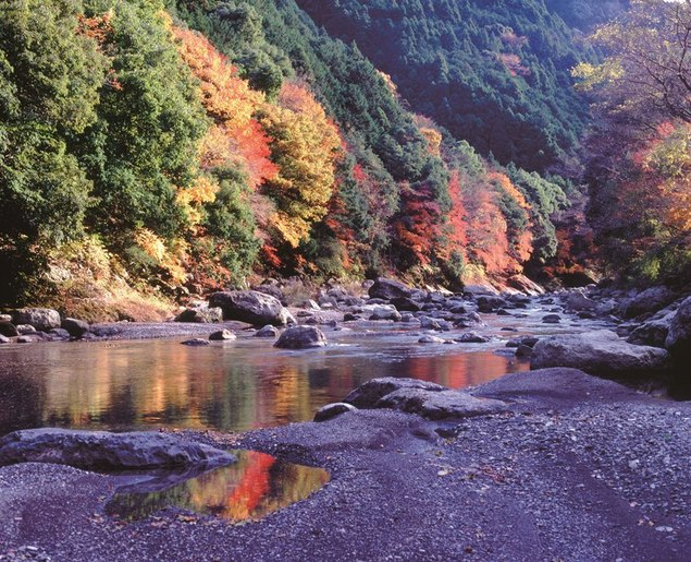 福士川渓谷の紅葉