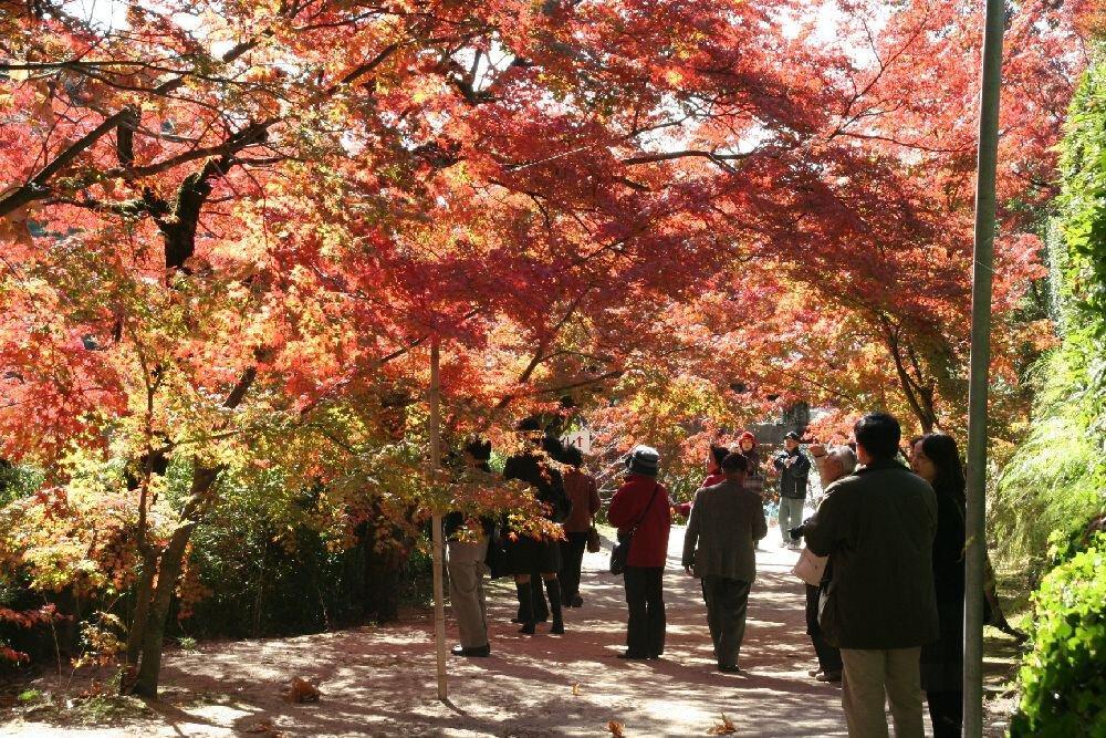 仁比山神社