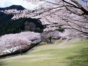 松阪市森林公園