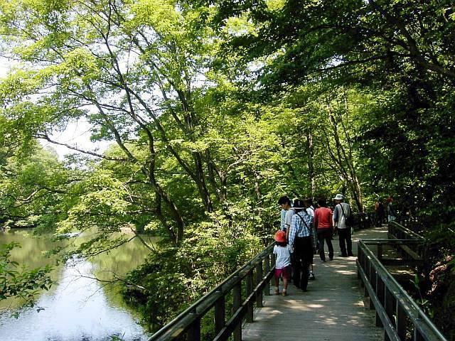 大阪府民の森 緑の文化園 むろいけ園地