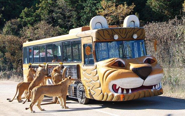 秋吉台自然動物公園 サファリランド