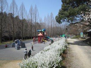 満濃池森林公園