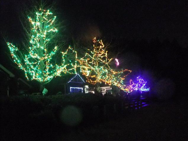 クリスマスイルミネーション 鳥海山木のおもちゃ美術館