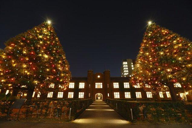 立教大学クリスマスツリー・イルミネーション(池袋キャンパス)