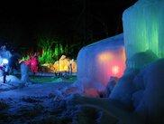 氷点下の森ライトアップ