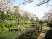 旭ヶ岡公園