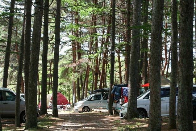 大自然に抱かれたキャンプ場ウッドペッカー
