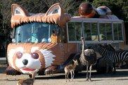 【営業時間変更】秋吉台自然動物公園 サファリランド