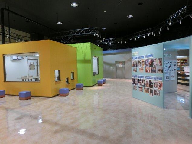 兵庫県動物愛護センター