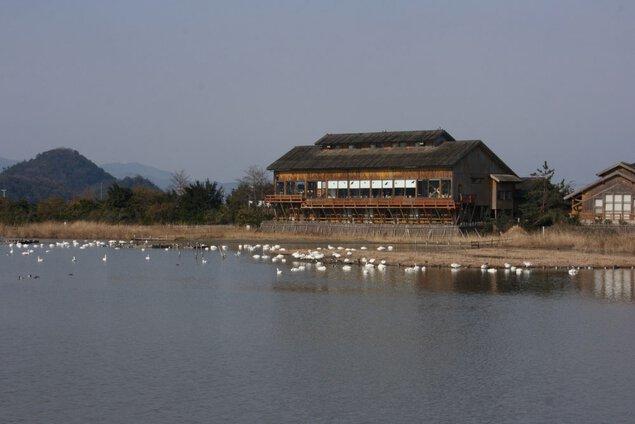 米子水鳥公園