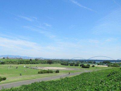 淀川河川公園 八雲地区・八雲野草地区・庭窪河畔地区