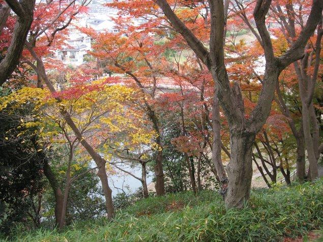 県立竜田公園