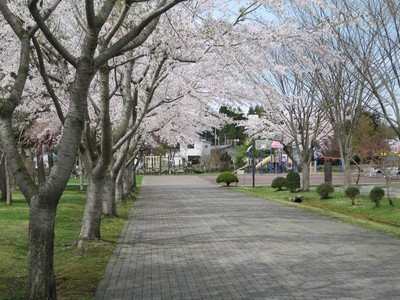 七戸町中央公園