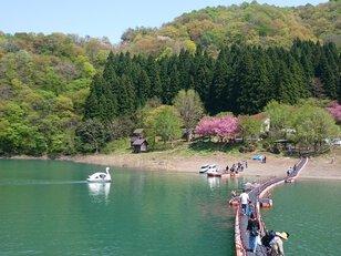 二子島森林公園キャンプ場