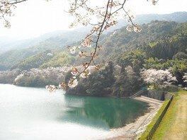 昭和池公園