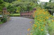 栃木市森林公園出流ふれあいの森