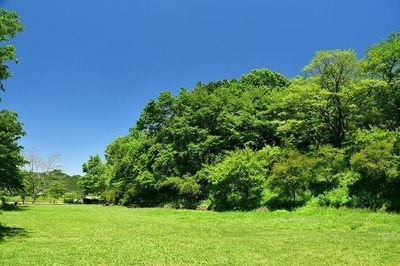 都立小峰公園(小峰ふれあい自然郷)