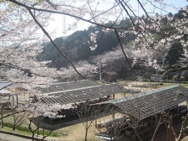 農業公園信貴山のどか村(バーベキューハウス)