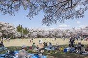 春日公園・城跡