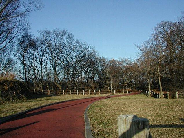 南部山健康運動公園