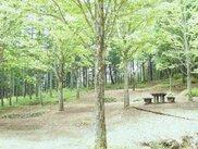 飛騨市森林公園キャンプ場