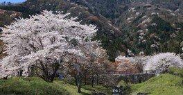 霞間ヶ渓公園