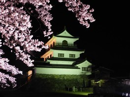 白石城本丸広場の桜 画像(5/5)