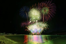 海洋博公園サマーフェスティバル2019 第41回海洋博公園花火大会 画像(2/2)