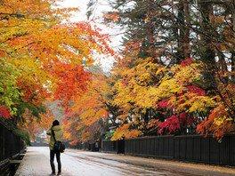 雨と紅葉を記念撮影