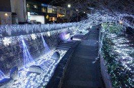 元茨木川緑地もイルミネーションに飾られる