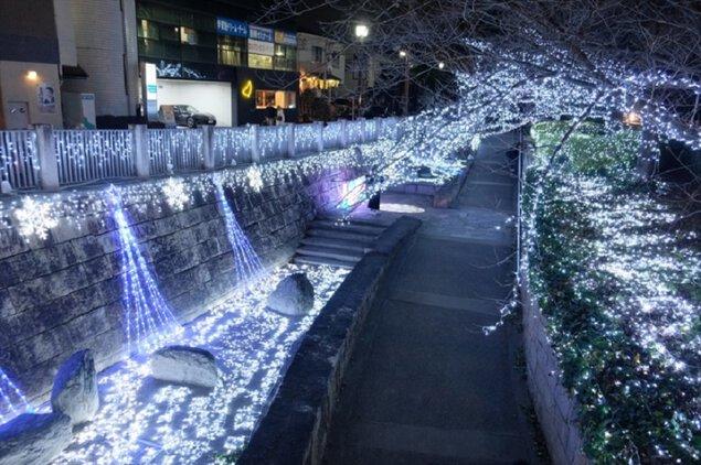 いばらきイルミフェスタ 灯(AKARI)