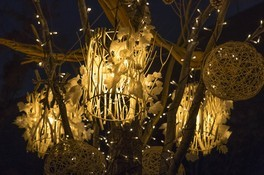 OMOHARA Christmas illumination(オモハラ・クリスマス・イルミネーション) 画像(2/2)