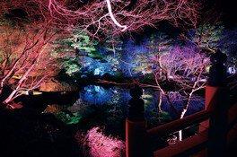 黄金の島 ジパング2020〜ジャポニスムイルミ〜 画像(5/5)