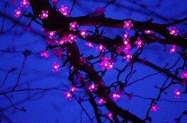 桜の花が一輪づつ再現されている