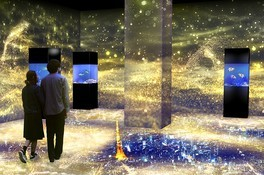 NAKED STAR AQUARIUM -星空のクリスマス- 画像(3/5)