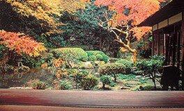 相阿弥作の園池も趣がある