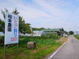 松本農園 いちご狩り 画像(2/2)