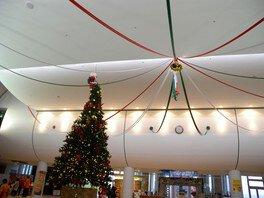 天井に届きそうな巨大ツリー
