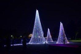 クリスマス夜間開放 画像(2/5)