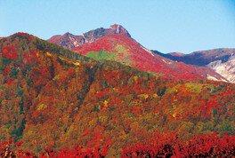 紅葉する朝日岳も見応えがある