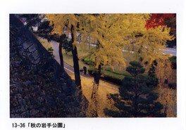 盛岡城跡公園(岩手公園)の紅葉 画像(4/4)