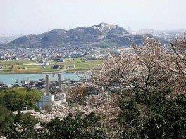 鹿島・扇平自然公園の桜 画像(3/3)