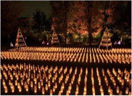 6000灯のキャンドルが灯るとさらに幻想的な空間が広がる