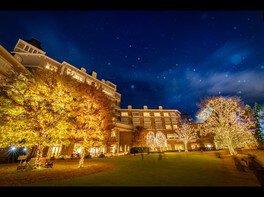ガーデンイルミネーション2020-2021 ~ランタンが灯る、ひかりの森~ 画像(2/5)