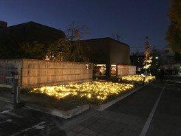 ナゴヤセントラルガーデンイルミネーション2019-2020 画像(5/5)