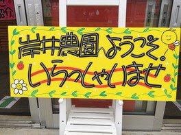 岸井農園 いちご狩り 画像(3/5)