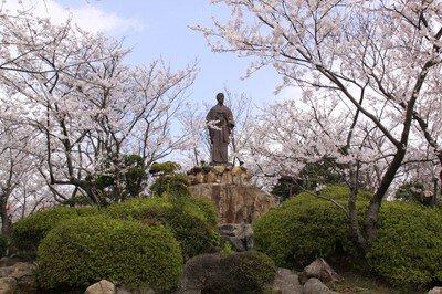日和山公園の桜(山口県)